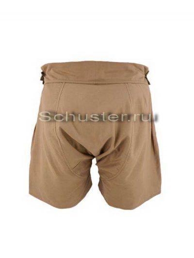 Underpants (Трусы)-02