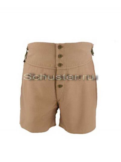 Underpants (Трусы)-01